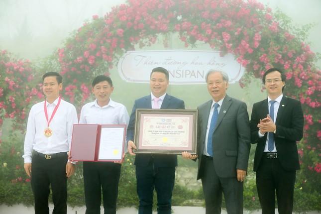 'Thung lũng hoa hồng lớn nhất Việt Nam' ở Sa Pa ảnh 3