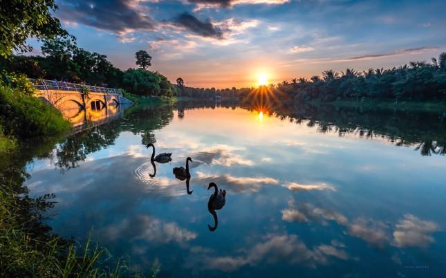 Ecopark lọt top 3 chủ đầu tư bất động sản uy tín nhất Việt Nam năm 2020 ảnh 2