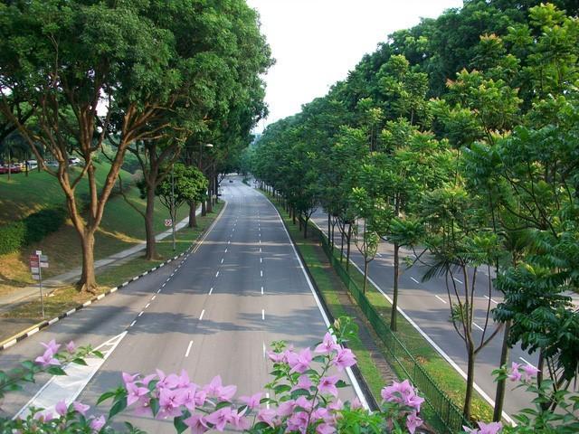 Chọn nhà chuẩn sống đẳng cấp như người Singapore ảnh 1