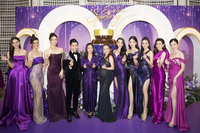 Hoa hậu Trần Tiểu Vy trở thành đại sứ thương hiệu Go Spring ảnh 5