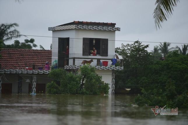 Lũ lớn lịch sử ở Quảng Bình, người dân leo nóc nhà chờ ứng cứu ảnh 6
