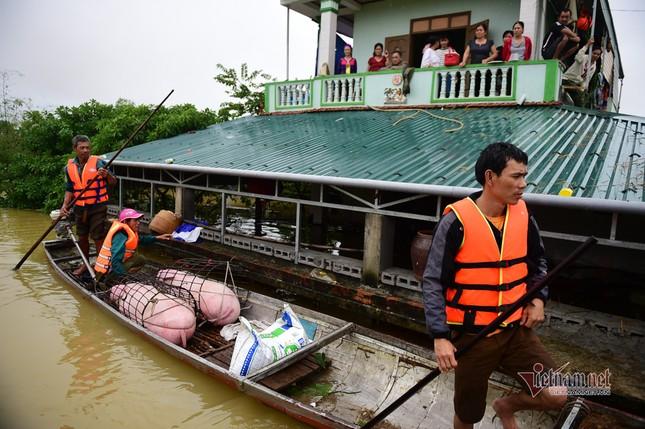 Lũ lớn lịch sử ở Quảng Bình, người dân leo nóc nhà chờ ứng cứu ảnh 8