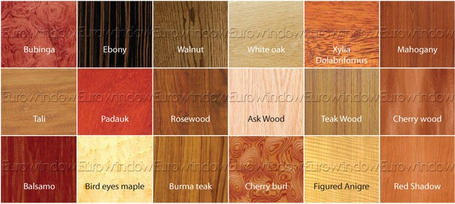 Cửa gỗ Eurowindow và những bí mật thiết kế nội thất hoàn hảo ảnh 2