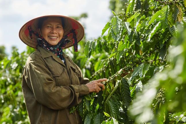 Nestlé Việt Nam vinh dự nhận 2 giải thưởng danh giá về trao quyền cho phụ nữ ảnh 1