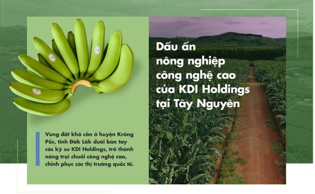 Dấu ấn nông nghiệp công nghệ cao của KDI Holdings tại Tây Nguyên ảnh 1