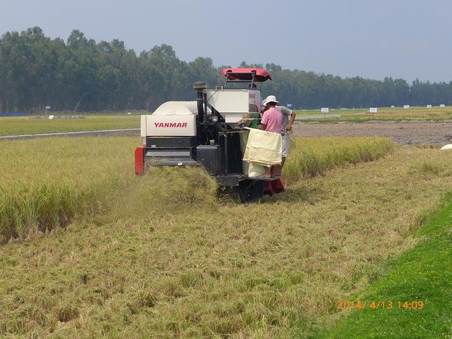 Giới thiệu Viện nghiên cứu nông nghiệp Yanmar, Việt Nam ảnh 2