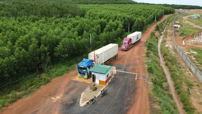 Dấu ấn nông nghiệp công nghệ cao của KDI Holdings tại Tây Nguyên ảnh 5