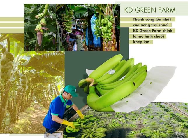 Dấu ấn nông nghiệp công nghệ cao của KDI Holdings tại Tây Nguyên ảnh 8