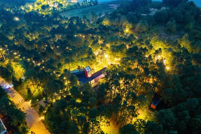 Cột mốc mới của nghệ thuật đương đại Việt Nam ảnh 4