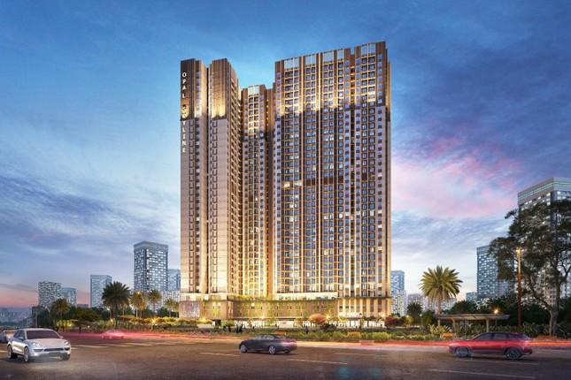 Sản phẩm căn hộ chung cư chiếm lĩnh thị trường bất động sản ảnh 1