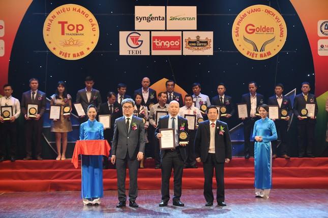 Công ty GHB do Ngọc Trinh điều hành lọt top 100 thương hiệu Vàng 2020 ảnh 4