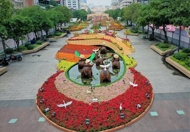 Nova Group tài trợ đường hoa tại TP.HCM, Phan Thiết và Biên Hòa ảnh 2