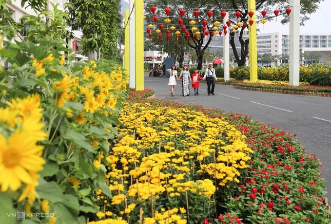 Những con đường khoe sắc hoa xuân nổi bật dịp năm mới ảnh 7