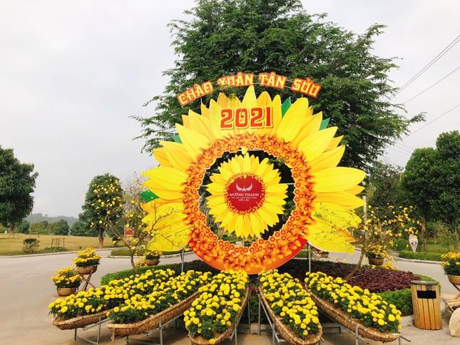 Nghệ An: Trẩy hội hoa xuân và nghỉ dưỡng với ưu đãi hấp dẫn tại Khu du lịch sinh thái Mường Thanh Diễn Lâm ảnh 1