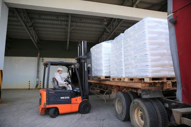 BSR sản xuất và xuất bán sản phẩm hạt nhựa mới T3045 ảnh 1
