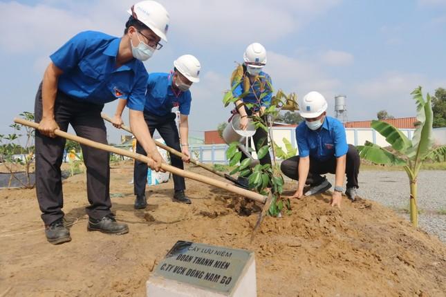 KĐN tiếp tục Chương trình trồng cây năm 2021 tại Bà Rịa ảnh 1