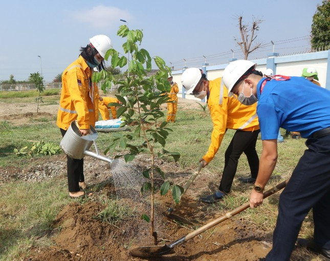 KĐN tiếp tục Chương trình trồng cây năm 2021 tại Bà Rịa ảnh 2
