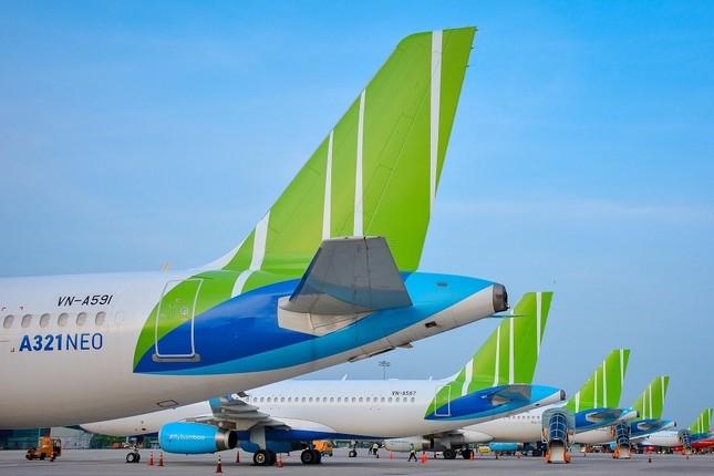Bamboo Airways đứng top đầu về số đường bay nội địa ảnh 2