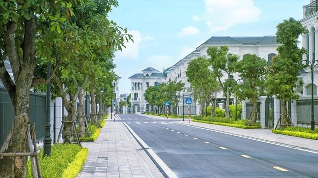 Thị trường bất động sản thích nghi với dịch COVID - 19 ảnh 1