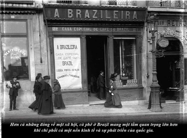 Kỳ 63: Brazil từ thuộc địa trở thành cường quốc cà phê thế giới ảnh 4
