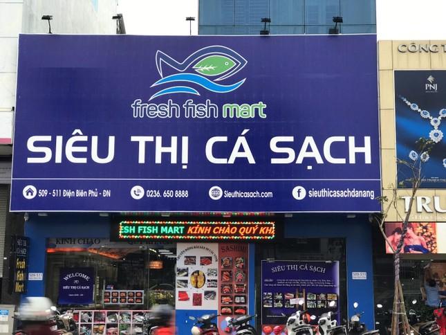 Siêu Thị Cá Sạch - Nơi mua hải sản hoàn hảo của mọi người ảnh 2