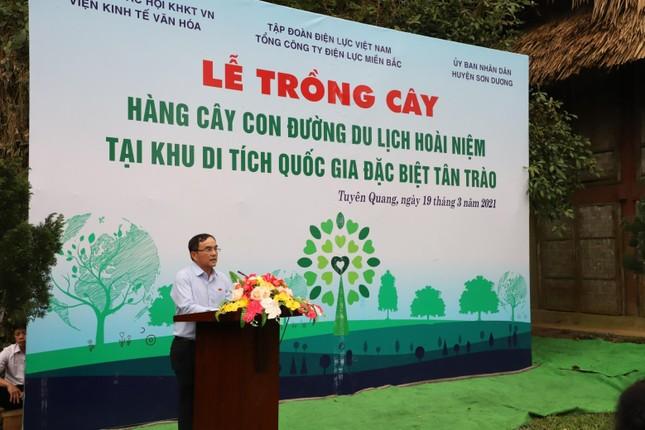 Tổng công ty Điện lực miền Bắc hưởng ứng Lễ trồng cây ảnh 3