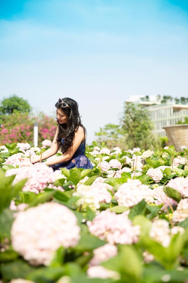 Du khách háo hức check in trước thềm Lễ hội hoa Sầm Sơn ảnh 5