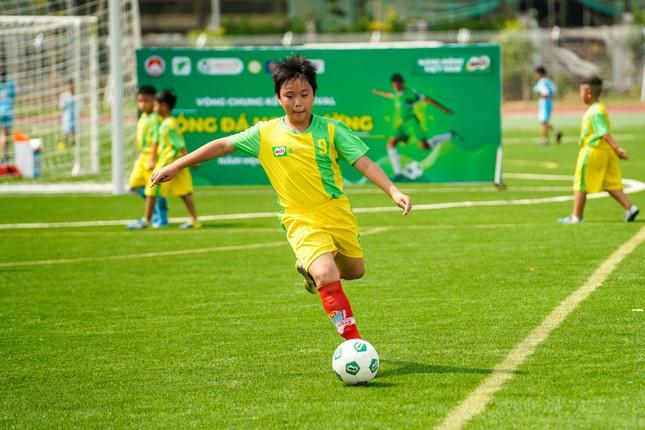 185 đội tranh tài VCK Festival bóng đá học đường TP.HCM 2020-2021 ảnh 3
