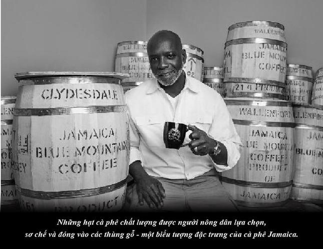 Kỳ 65: Jamaica – sự quyến rũ của vùng nguyên liệu cà phê nơi cao nhất thế giới ảnh 4