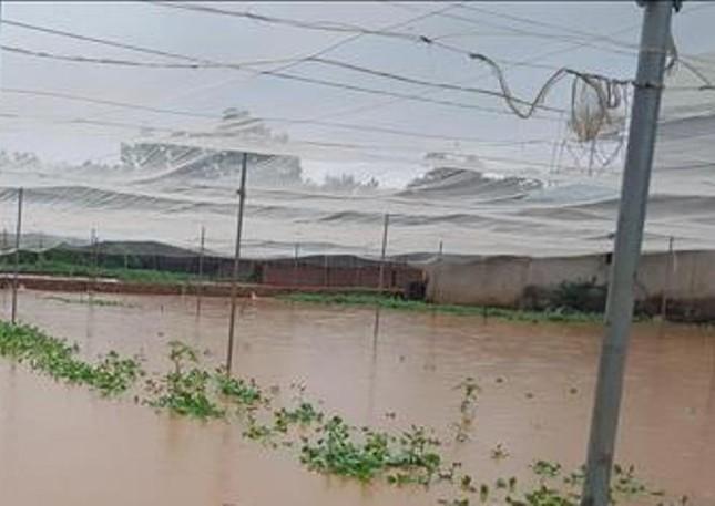 Bình Phước di dân vì nước bất ngờ dâng cao gần 2m ảnh 3