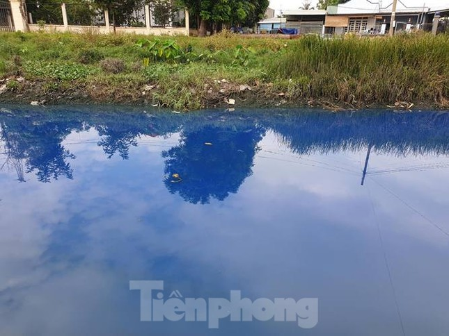 Nước kênh trong khu công nghiệp ở Bình Dương đổi màu xanh kỳ lạ ảnh 1