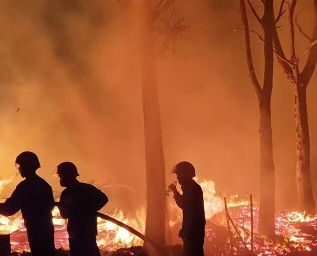 Vườn cây rộng 10.000m2 ở Bình Phước bị lửa thiêu rụi trong đêm ảnh 1