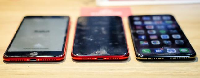 iPhone XR so dáng iPhone XS Max và 8 Plus ảnh 3