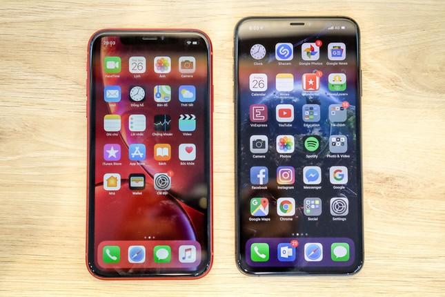 iPhone XR so dáng iPhone XS Max và 8 Plus ảnh 6