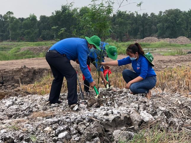 Đồng Tháp phát động chương trình trồng 1 tỷ cây xanh - Vì một Việt Nam xanh ảnh 5