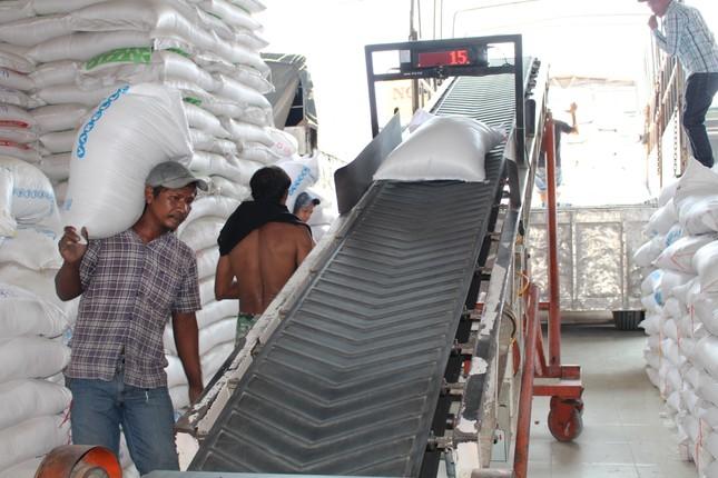 Nhiều doanh nghiệp trúng thầu cung cấp gạo dự trữ từ chối ký hợp đồng ảnh 1