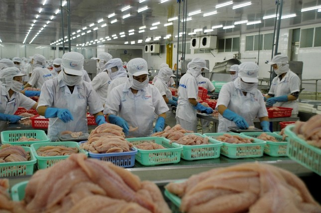 Xuất khẩu cá tra tiếp tục tăng trưởng âm ảnh 1