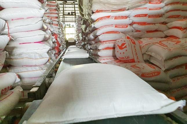 Xuất khẩu gạo tiếp tục khởi sắc? ảnh 1