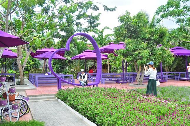 Căn nhà màu tím độc đáo ở Cần Thơ hút khách đến 'check-in' ảnh 1