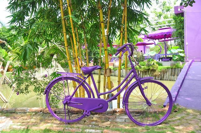 Căn nhà màu tím độc đáo ở Cần Thơ hút khách đến 'check-in' ảnh 16