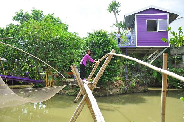 Căn nhà màu tím độc đáo ở Cần Thơ hút khách đến 'check-in' ảnh 7