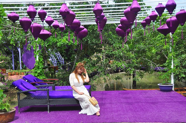 Căn nhà màu tím độc đáo ở Cần Thơ hút khách đến 'check-in' ảnh 6