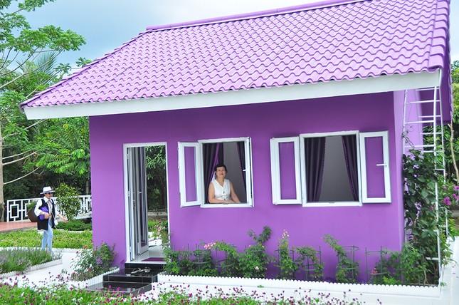 Căn nhà màu tím độc đáo ở Cần Thơ hút khách đến 'check-in' ảnh 5