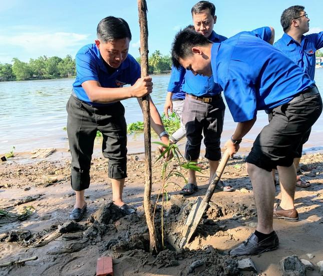 Cần Thơ trồng 1000 cây xanh chống sạt lở bờ sông ảnh 1