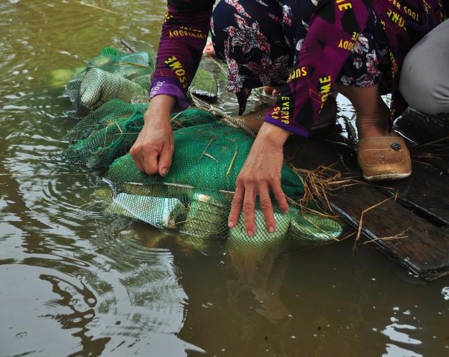 Độc đáo chiếc bè từ vỏ chai nhựa vừa bảo vệ môi trường vừa phục vụ đi lại ảnh 7