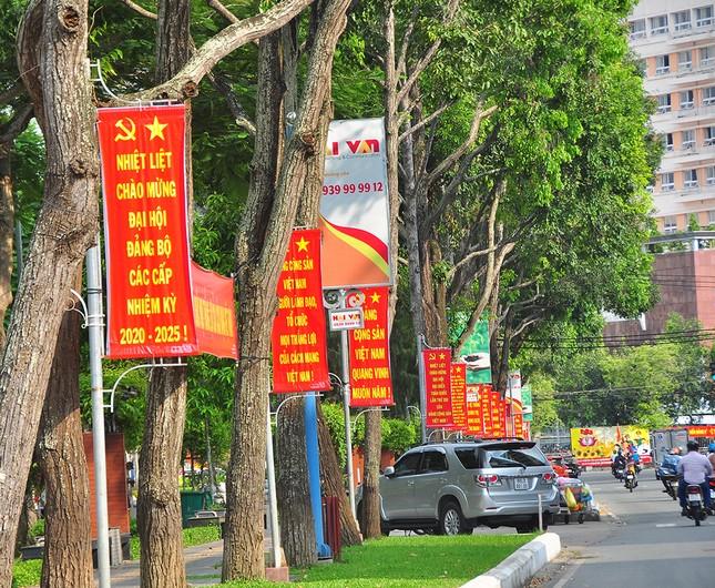 Đường phố Cần Thơ rợp bóng cờ hoa chào mừng Đại hội Đảng ảnh 3