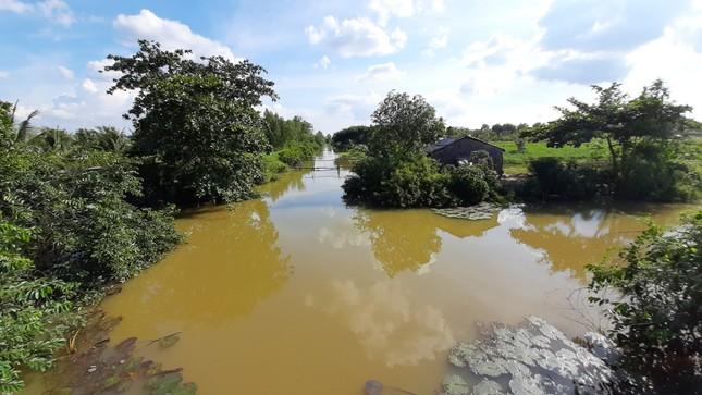 Bến Tre đầu tư hồ chứa nước ngọt 352 tỷ đồng phục vụ dân bị hạn mặn ảnh 3