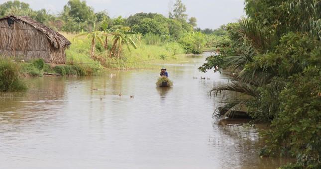 Bến Tre đầu tư hồ chứa nước ngọt 352 tỷ đồng phục vụ dân bị hạn mặn ảnh 2
