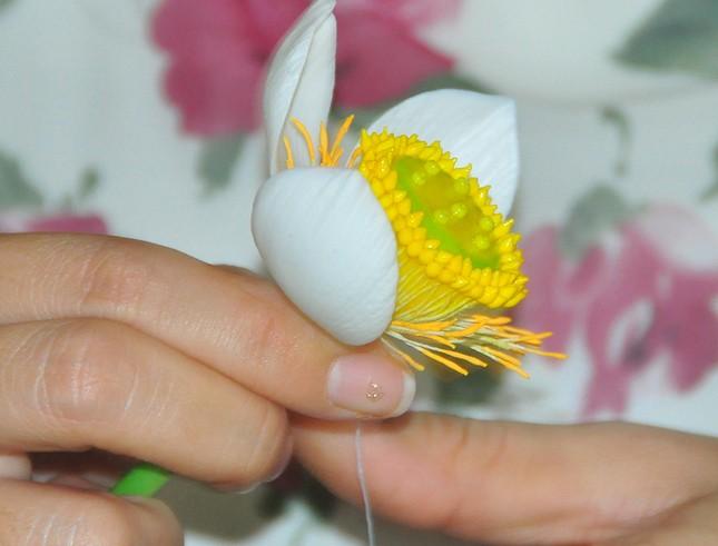 Tình yêu hoa từ... đất của nữ thạc sỹ 9X ở Cần Thơ ảnh 5