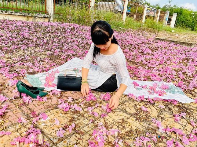 Con đường hoa kèn hồng ở miền Tây lung linh như phim Hàn thu hút giới trẻ ảnh 13
